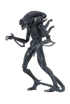 Figura Alien Warrior – Ultimate – Neca