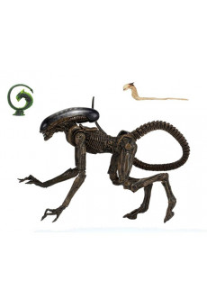 Figura Ultimate Dog Alien - Alien 3 - Neca
