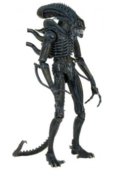 Figura Alien Warrior – Aliens – Neca – Escala 1/4